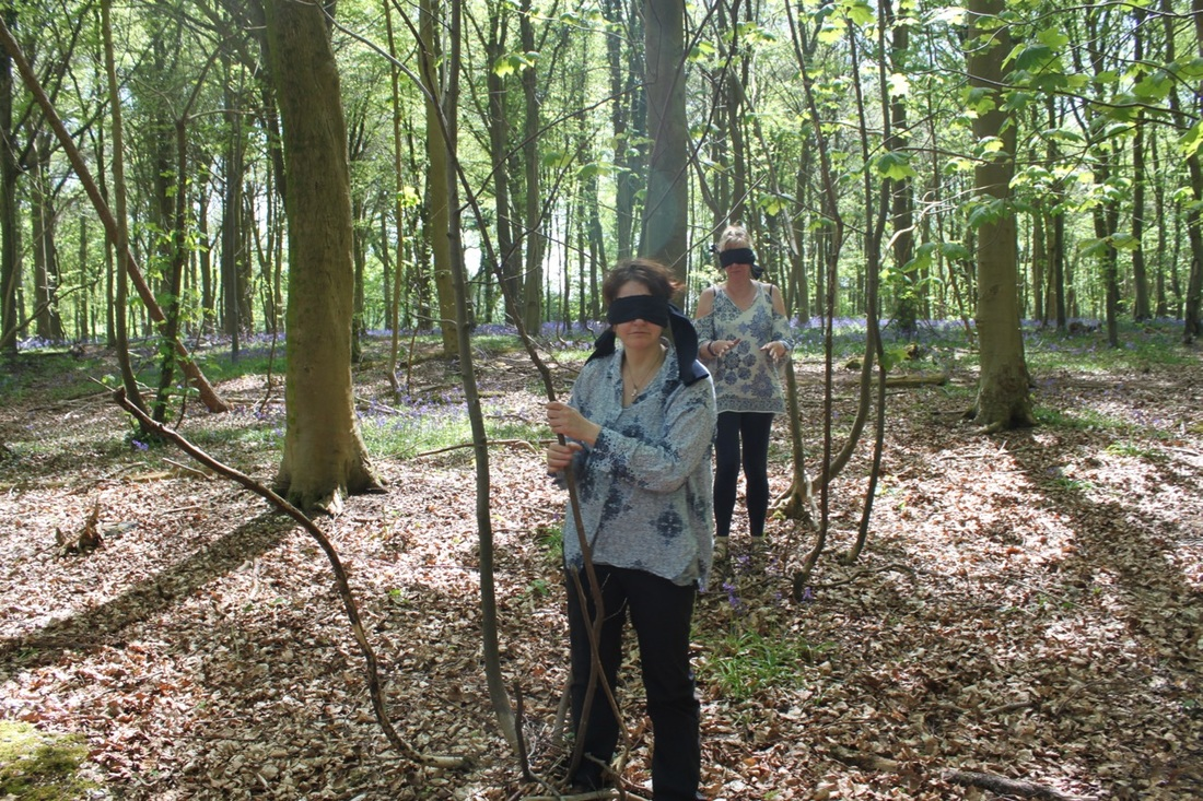 Blindfold in the woods. School of the Wild